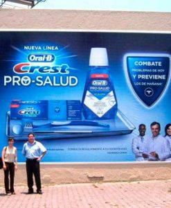 billboard media frame, wallscape banner media frame